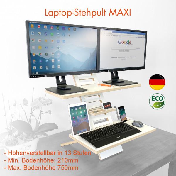 01Stand_Desk_Maxi_V2.jpg